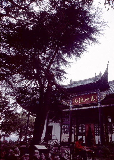 Ancient Lute Pavilion8