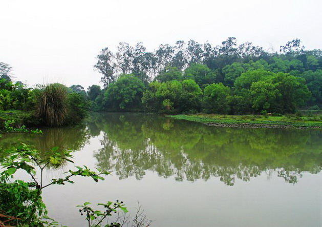 Liangfengjiang National Forest Park9