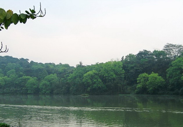 Liangfengjiang National Forest Park13