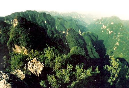 Mountain Wangwu Scenic Area14