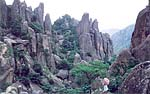 Chaya Stone Forest